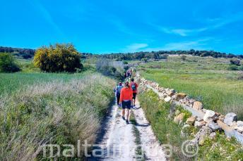 Grupa uczniów języka angielskiego spacerująca po okolicy na Malcie
